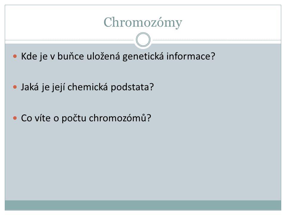 Chromozómy Kde je v buňce uložená genetická informace? Jaká je její chemická podstata? Co víte o počtu chromozómů?