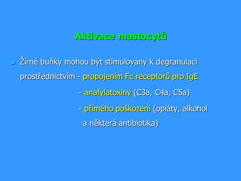 Aktivace mastocytů prostřednictvím IgE Po navázání multivalentního antigenu ( mnohobuněčného parazita) pomocí IgE na vysokoafinní Fc receptor pro IgE (Fc  RI) dojde k agregaci několika molekul Fc  RI Po navázání multivalentního antigenu ( mnohobuněčného parazita) pomocí IgE na vysokoafinní Fc receptor pro IgE (Fc  RI) dojde k agregaci několika molekul Fc  RI Iniciace degranulace mastocytu ( fúze cytoplazmatických granulí s povrchovou membránou a uvolnění jejich obsahu) Iniciace degranulace mastocytu ( fúze cytoplazmatických granulí s povrchovou membránou a uvolnění jejich obsahu) Aktivace metabolismu kyseliny arachidonové (leukotrien C4, prostaglandin PGD2) Aktivace metabolismu kyseliny arachidonové (leukotrien C4, prostaglandin PGD2) Zahájení produkce cytokinů (TNF, TGF , IL-4,5,6…) Zahájení produkce cytokinů (TNF, TGF , IL-4,5,6…)