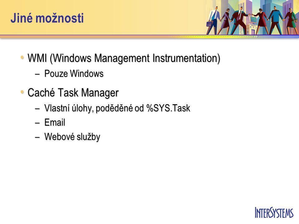 Jiné možnosti WMI (Windows Management Instrumentation) WMI (Windows Management Instrumentation) –Pouze Windows Caché Task Manager Caché Task Manager –