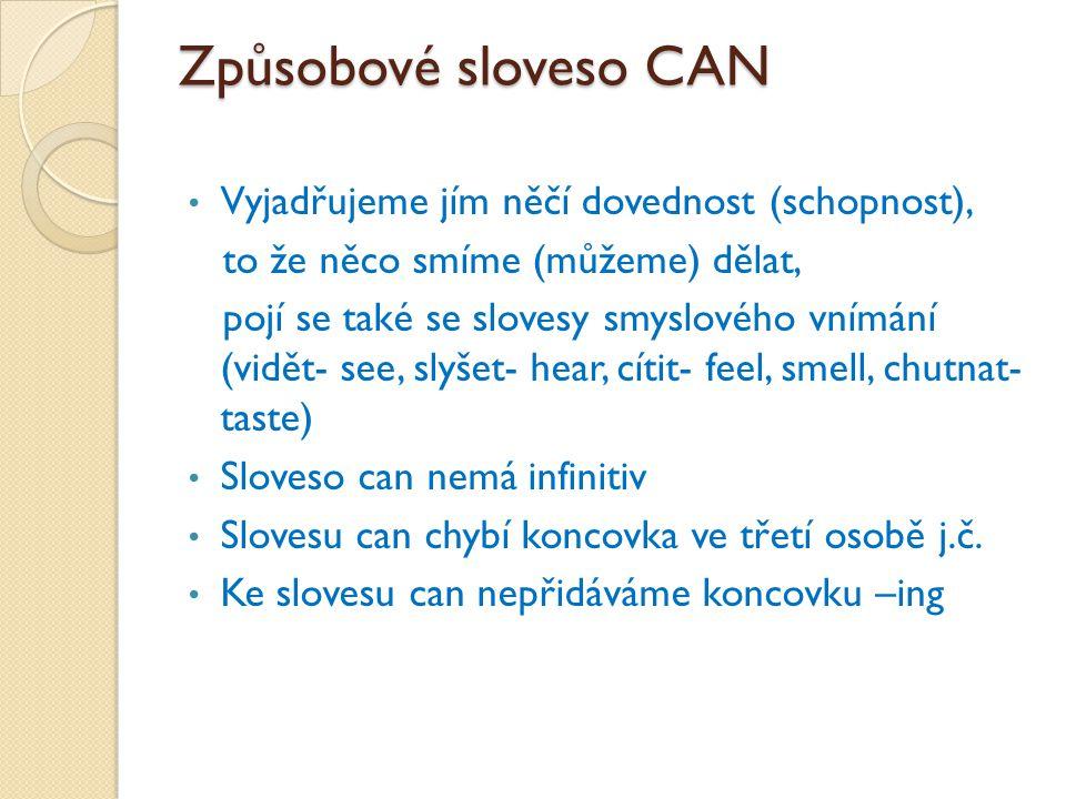 Tvoření vět: Osoba can (not) významové sloveso Icanplay the piano.