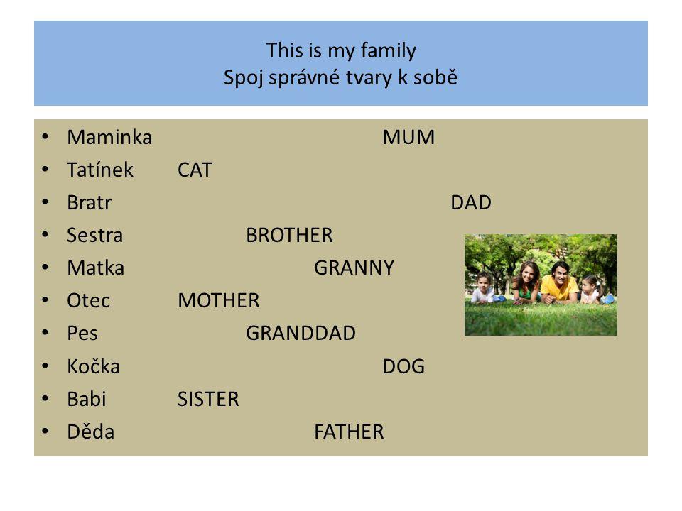 This is my family Spoj správné tvary k sobě MaminkaMUM TatínekCAT BratrDAD SestraBROTHER MatkaGRANNY OtecMOTHER PesGRANDDAD KočkaDOG BabiSISTER DědaFATHER