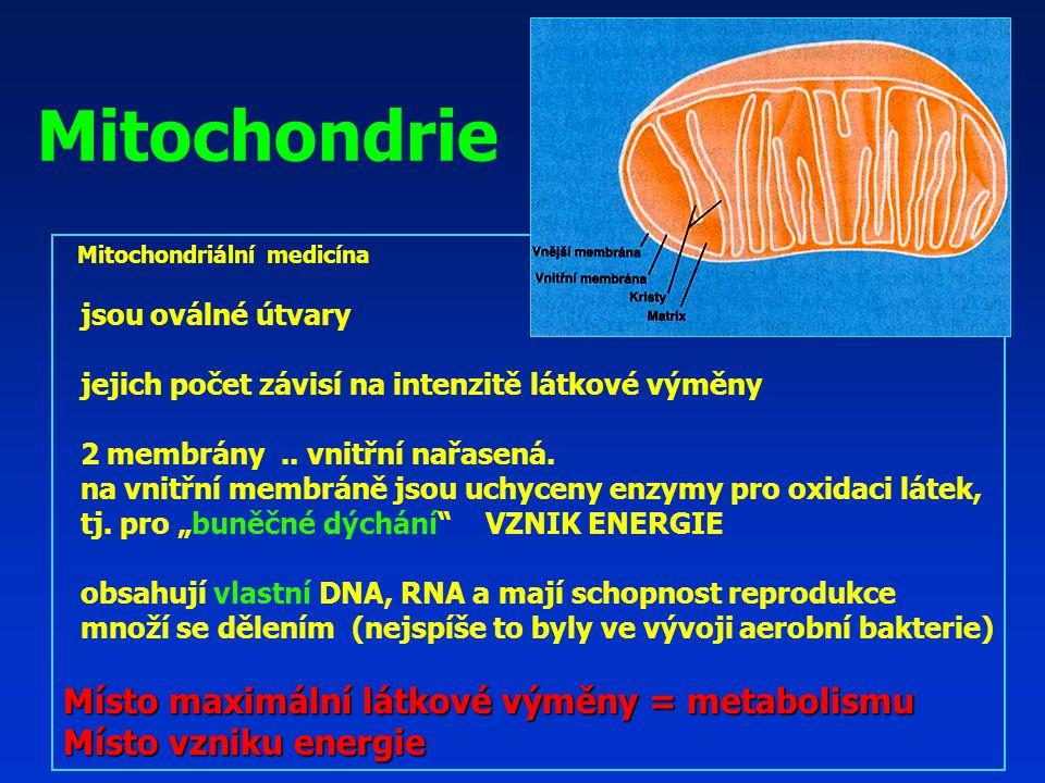 Mitochondriální medicína jsou oválné útvary jejich počet závisí na intenzitě látkové výměny 2 membrány..