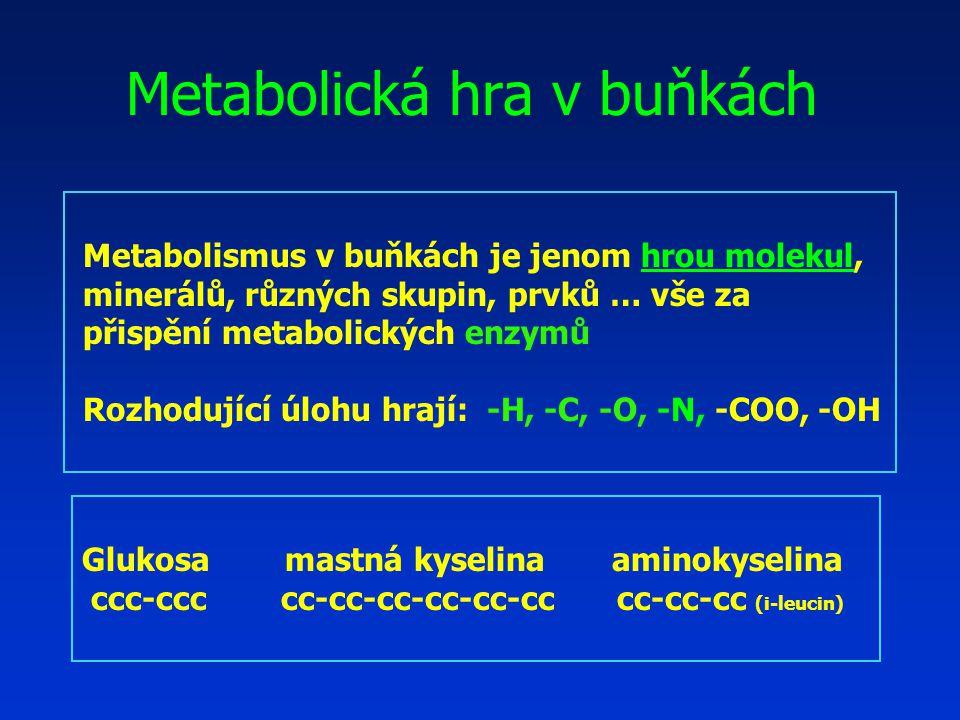 Metabolismus v buňkách je jenom hrou molekul, minerálů, různých skupin, prvků … vše za přispění metabolických enzymů Rozhodující úlohu hrají: -H, -C, -O, -N, -COO, -OH Glukosa mastná kyselina aminokyselina ccc-ccc cc-cc-cc-cc-cc-cc cc-cc-cc (i-leucin) Metabolická hra v buňkách