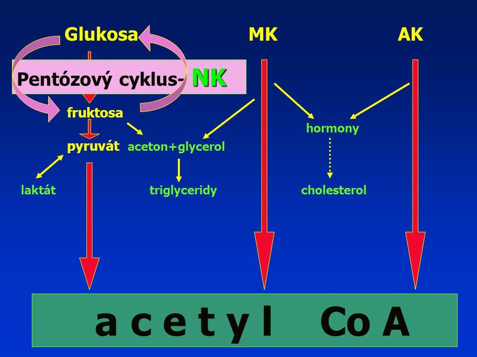 Glukosa MK AK fruktosa hormony pyruvát aceton+glycerol laktát triglyceridy cholesterol a c e t y l Co A NK Pentózový cyklus- NK