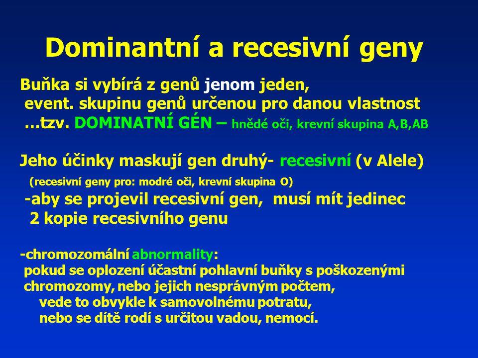 Dominantní a recesivní geny Buňka si vybírá z genů jenom jeden, event.