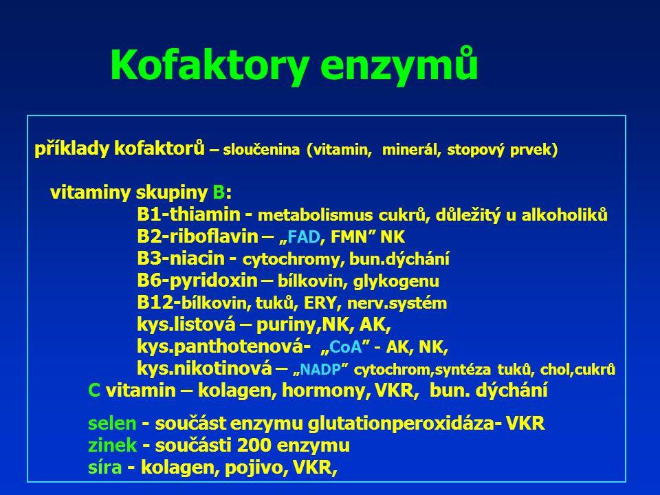 """Kofaktory enzymů příklady kofaktorů – sloučenina (vitamin, minerál, stopový prvek) vitaminy skupiny B: B1-thiamin - metabolismus cukrů, důležitý u alkoholiků B2-riboflavin – """"FAD, FMN NK B3-niacin - cytochromy, bun.dýchání B6-pyridoxin – bílkovin, glykogenu B12- bílkovin, tuků, ERY, nerv.systém kys.listová – puriny,NK, AK, kys.panthotenová- """" CoA - AK, NK, kys.nikotinová – """"NADP cytochrom,syntéza tuků, chol,cukrů C vitamin – kolagen, hormony, VKR, bun."""