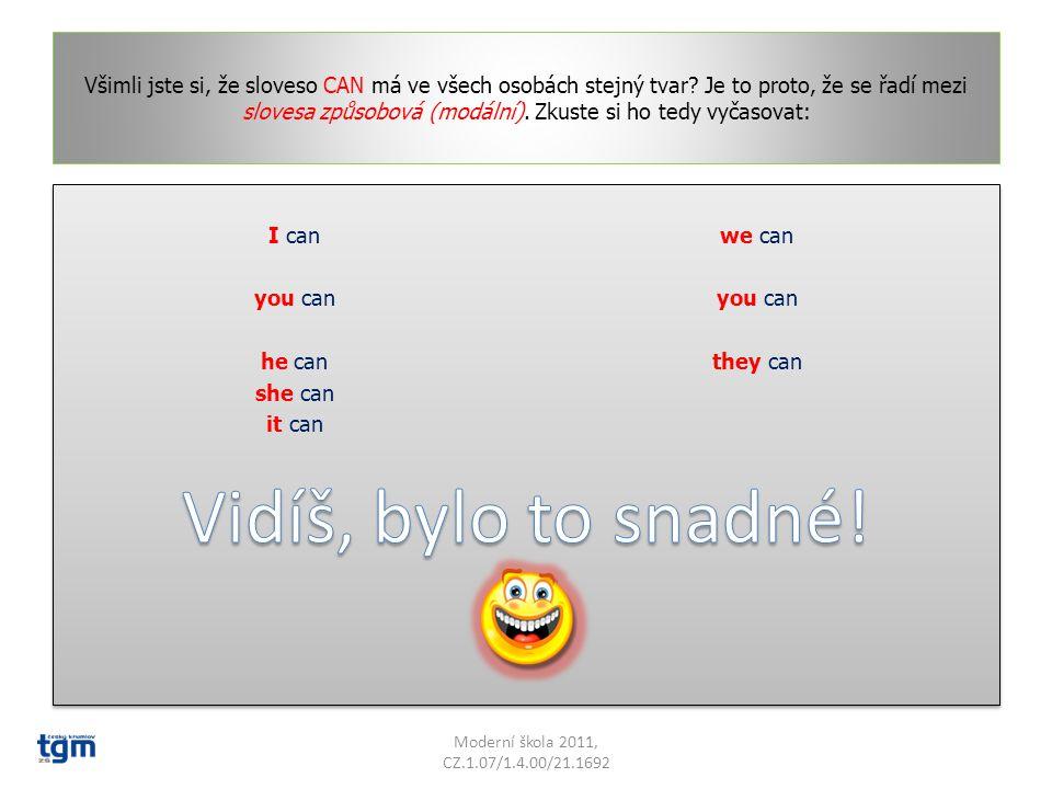 Teď přeložte věty opačným směrem. I can speak foreign languages.