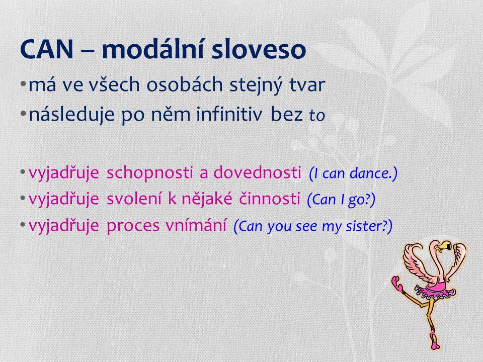 : Positive sentence: podmět + can + infinitiv I can swim.