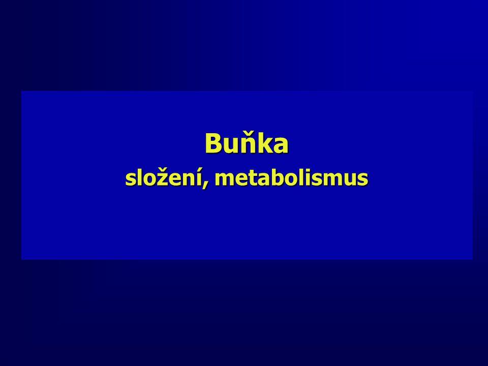 Buňka složení, metabolismus