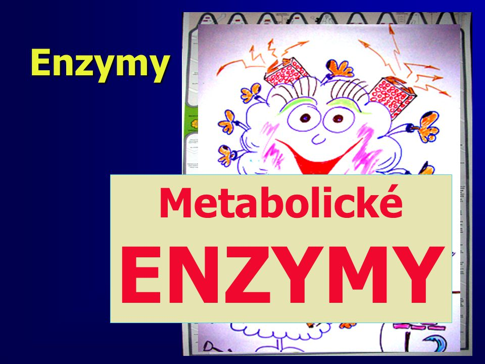 Enzymy Metabolické ENZYMY