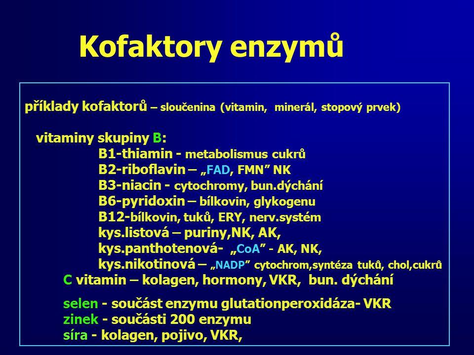 """Kofaktory enzymů příklady kofaktorů – sloučenina (vitamin, minerál, stopový prvek) vitaminy skupiny B: B1-thiamin - metabolismus cukrů B2-riboflavin – """"FAD, FMN NK B3-niacin - cytochromy, bun.dýchání B6-pyridoxin – bílkovin, glykogenu B12- bílkovin, tuků, ERY, nerv.systém kys.listová – puriny,NK, AK, kys.panthotenová- """" CoA - AK, NK, kys.nikotinová – """"NADP cytochrom,syntéza tuků, chol,cukrů C vitamin – kolagen, hormony, VKR, bun."""