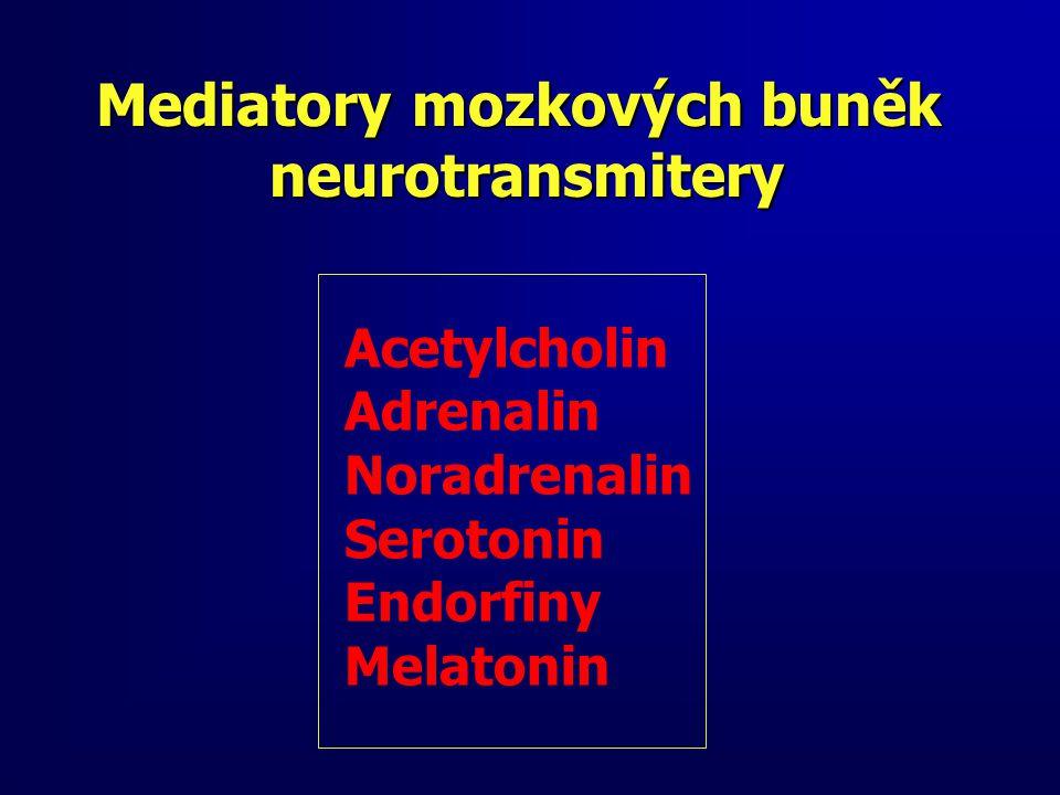Mediatory mozkových buněk neurotransmitery neurotransmitery Acetylcholin Adrenalin Noradrenalin Serotonin Endorfiny Melatonin