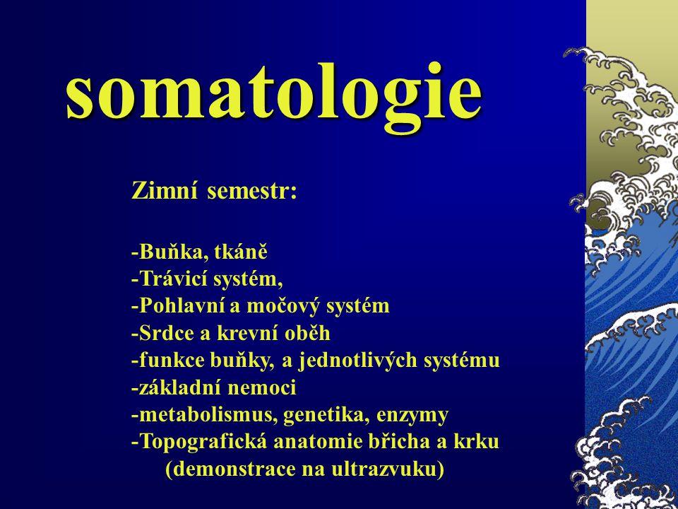 somatologie Zimní semestr: -Buňka, tkáně -Trávicí systém, -Pohlavní a močový systém -Srdce a krevní oběh -funkce buňky, a jednotlivých systému -základ