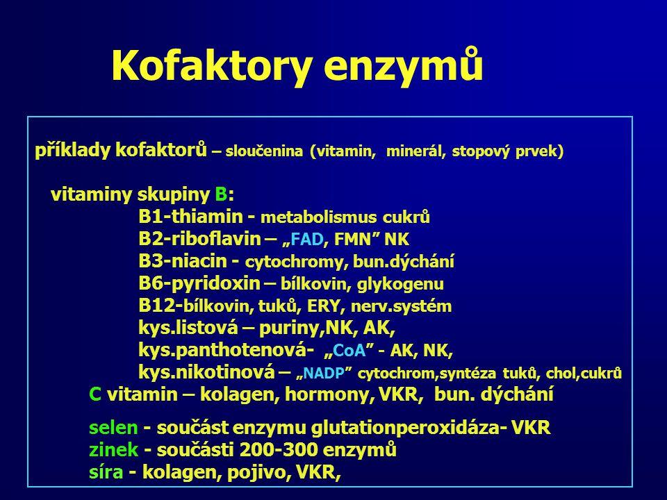 Kofaktory enzymů příklady kofaktorů – sloučenina (vitamin, minerál, stopový prvek) vitaminy skupiny B: B1-thiamin - metabolismus cukrů B2-riboflavin –