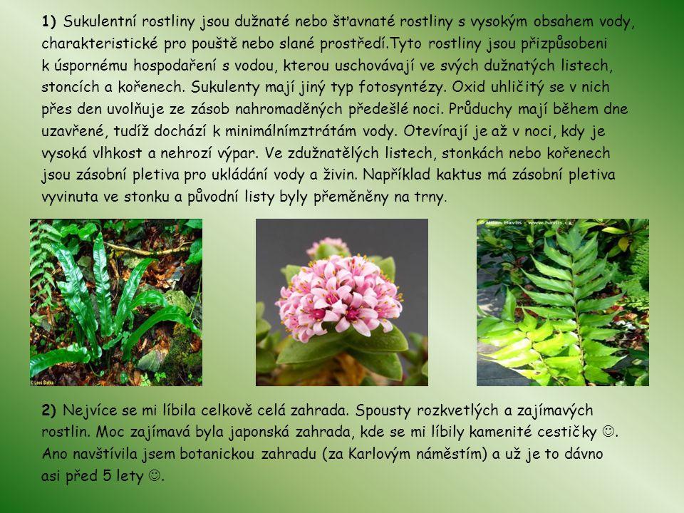 1) Sukulentní rostliny jsou dužnaté nebo šťavnaté rostliny s vysokým obsahem vody, charakteristické pro pouště nebo slané prostředí.Tyto rostliny jsou přizpůsobeni k úspornému hospodaření s vodou, kterou uschovávají ve svých dužnatých listech, stoncích a kořenech.