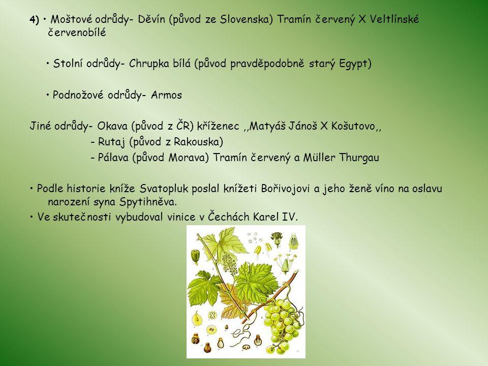 4) Moštové odrůdy- Děvín (původ ze Slovenska) Tramín červený X Veltlínské červenobílé Stolní odrůdy- Chrupka bílá (původ pravděpodobně starý Egypt) Po