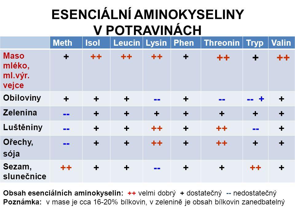 ESENCIÁLNÍ AMINOKYSELINY V POTRAVINÁCH MethIsolLeucinLysinPhenThreoninTrypValin Maso mléko, ml.výr. vejce +++ + + Obiloviny +++--+ -- ++ Zelenina --++