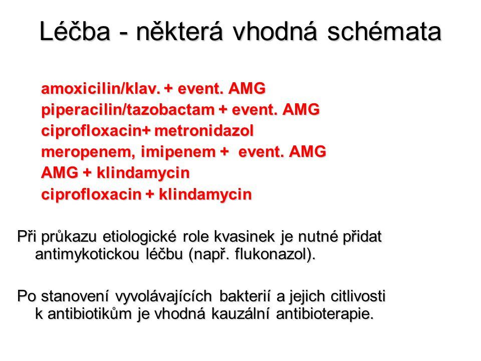 Léčba - některá vhodná schémata amoxicilin/klav. + event. AMG piperacilin/tazobactam + event. AMG ciprofloxacin+ metronidazol meropenem, imipenem + ev