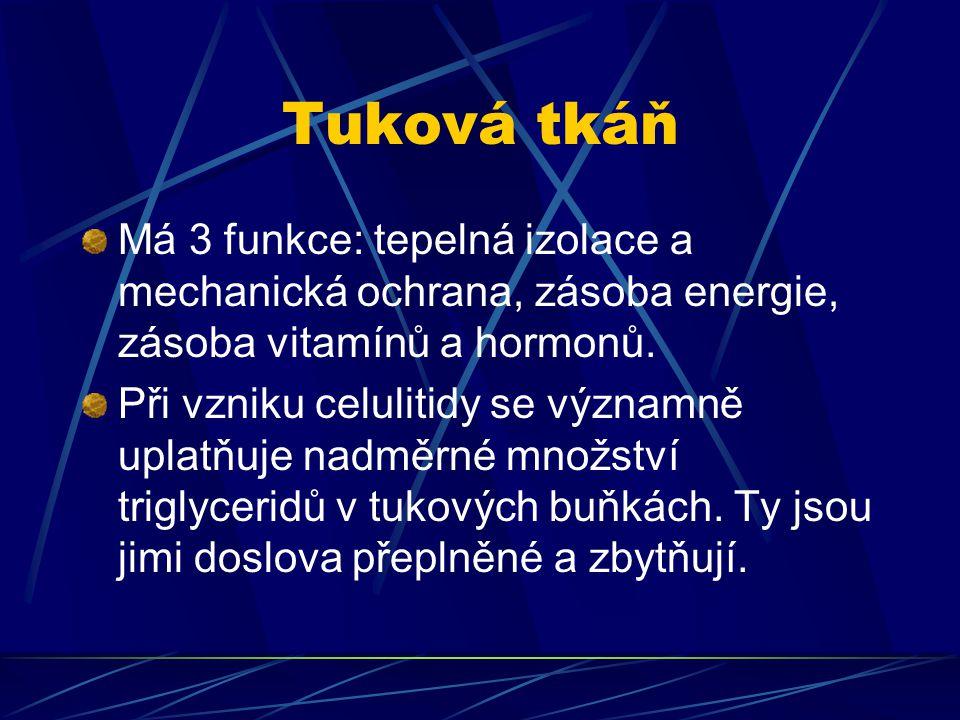 Tuková tkáň Má 3 funkce: tepelná izolace a mechanická ochrana, zásoba energie, zásoba vitamínů a hormonů. Při vzniku celulitidy se významně uplatňuje
