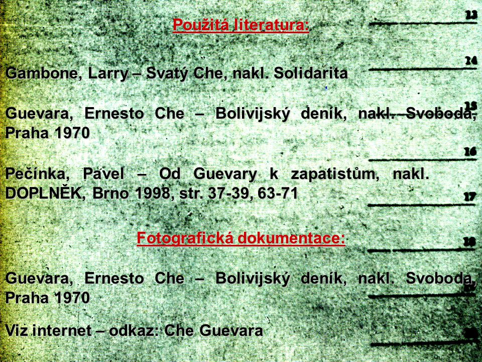 Gambone, Larry – Svatý Che, nakl. Solidarita Guevara, Ernesto Che – Bolivijský deník, nakl. Svoboda, Praha 1970 Pečínka, Pavel – Od Guevary k zapatist