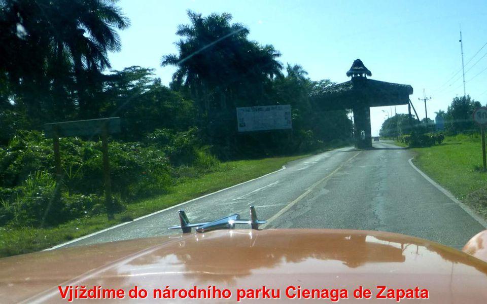 Vjíždíme do národního parku Cienaga de Zapata