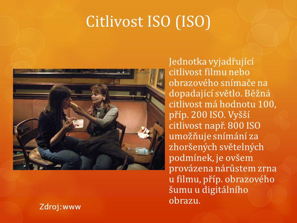Citlivost ISO (ISO) Jednotka vyjadřující citlivost filmu nebo obrazového snímače na dopadající světlo.