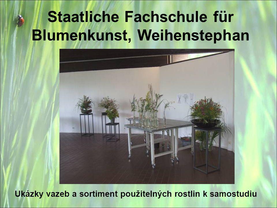 Staatliche Fachschule für Blumenkunst, Weihenstephan Ukázky vazeb a sortiment použitelných rostlin k samostudiu