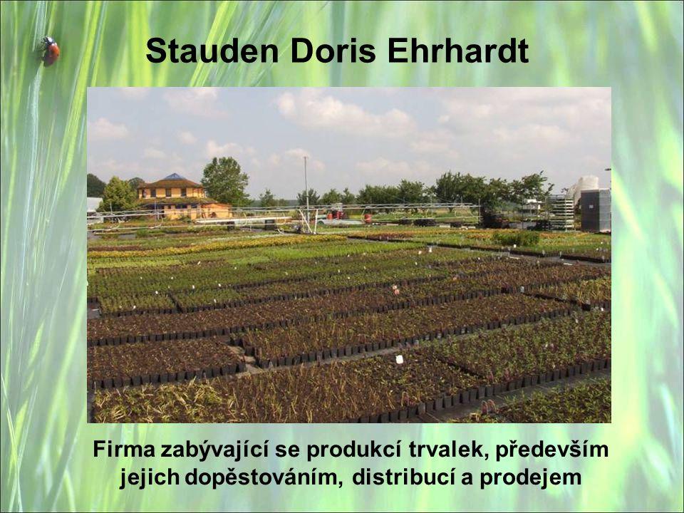 Stauden Doris Ehrhardt Firma zabývající se produkcí trvalek, především jejich dopěstováním, distribucí a prodejem
