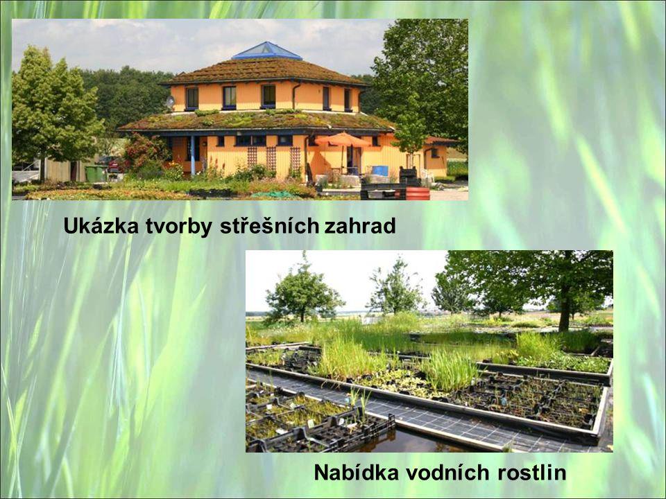 Nabídka vodních rostlin Ukázka tvorby střešních zahrad