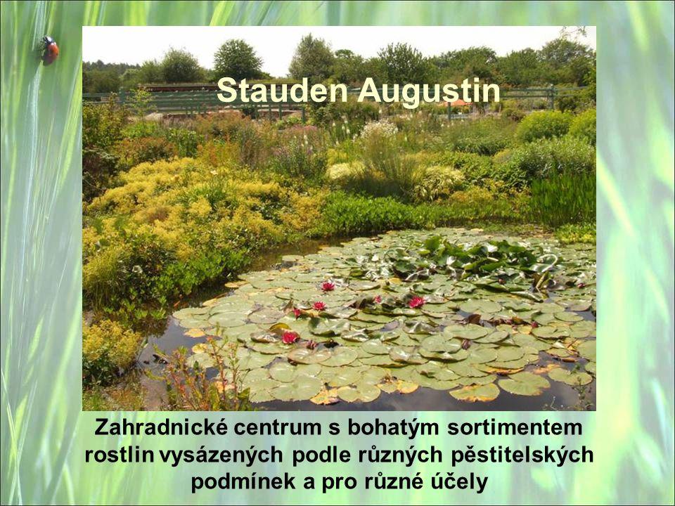 Stauden Augustin Zahradnické centrum s bohatým sortimentem rostlin vysázených podle různých pěstitelských podmínek a pro různé účely
