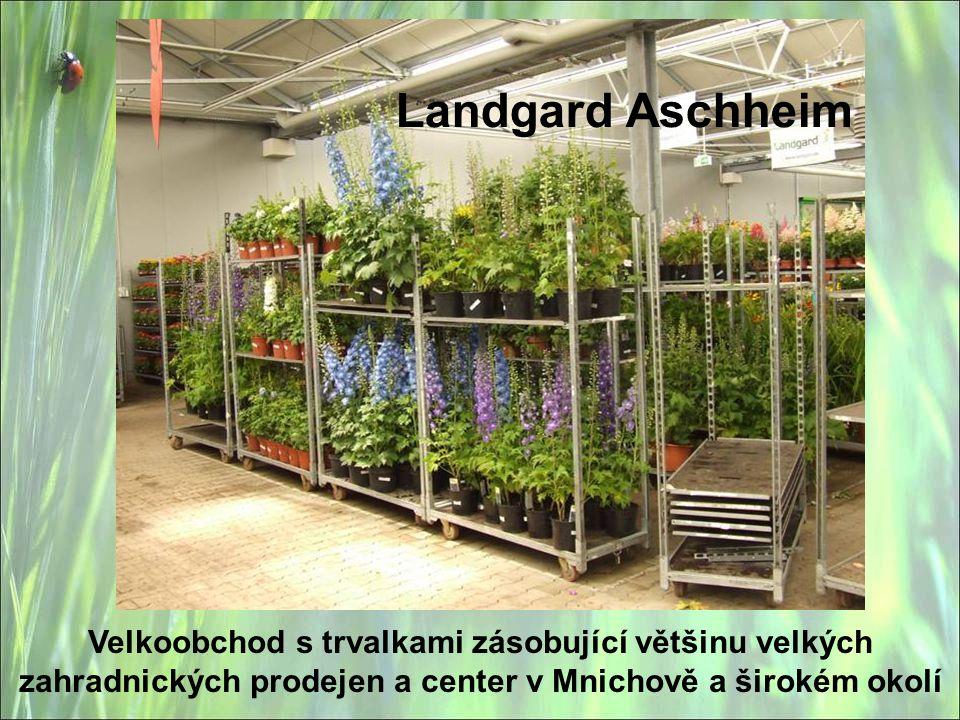 Landgard Aschheim Velkoobchod s trvalkami zásobující většinu velkých zahradnických prodejen a center v Mnichově a širokém okolí
