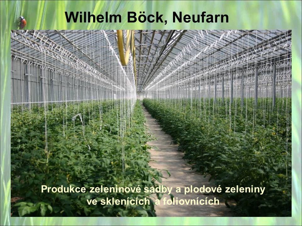 Wilhelm Böck, Neufarn Produkce zeleninové sadby a plodové zeleniny ve sklenících a foliovnících