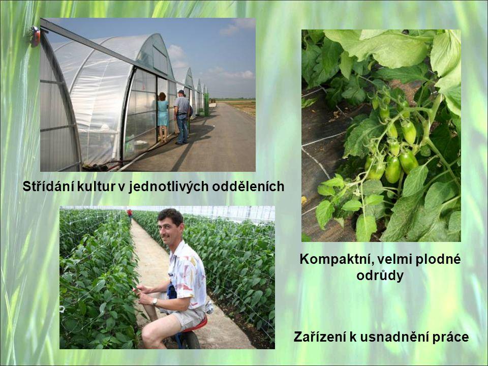 Střídání kultur v jednotlivých odděleních Zařízení k usnadnění práce Kompaktní, velmi plodné odrůdy