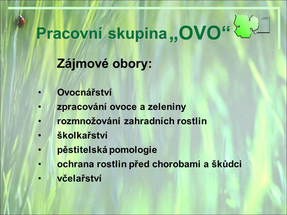 Pracovní skupina Členové skupiny: IIng.Romana Michalková michalkova@baobab.cz IIng.