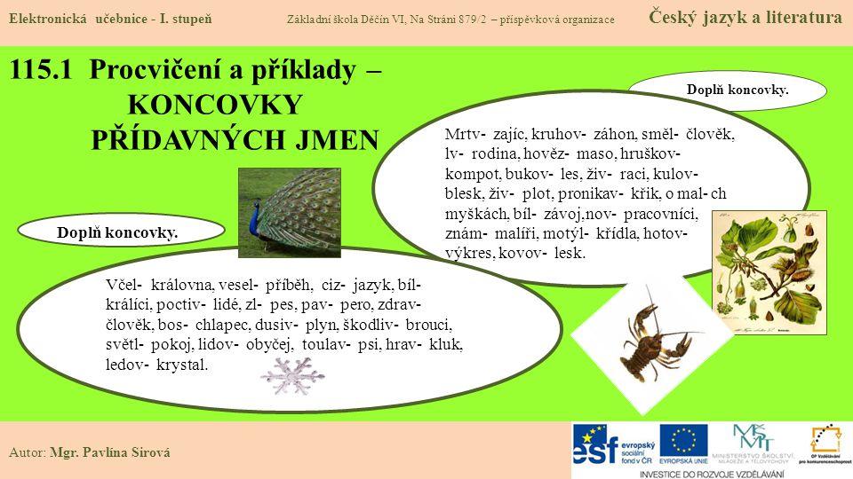 115.1 Procvičení a příklady – KONCOVKY PŘÍDAVNÝCH JMEN Elektronická učebnice - I.