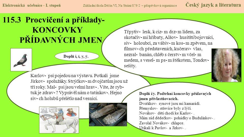 115.3 Procvičení a příklady- KONCOVKY PŘÍDAVNÝCH JMEN Elektronická učebnice - I.