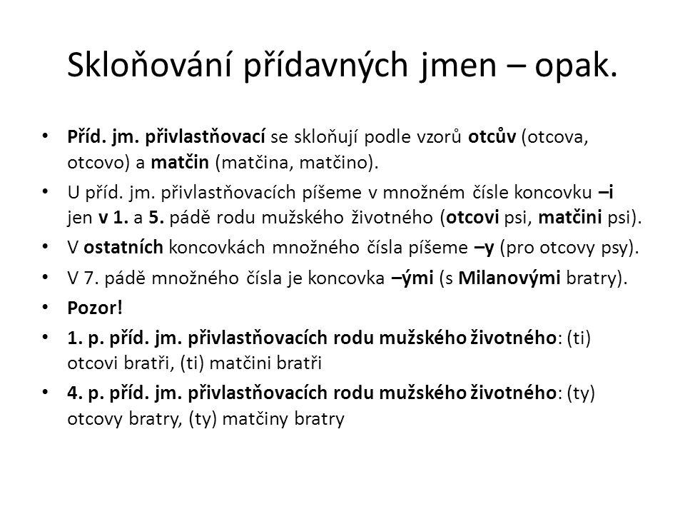 Podstatná X přídavná jména Rozlišuj: 3.a 6. pád podst.