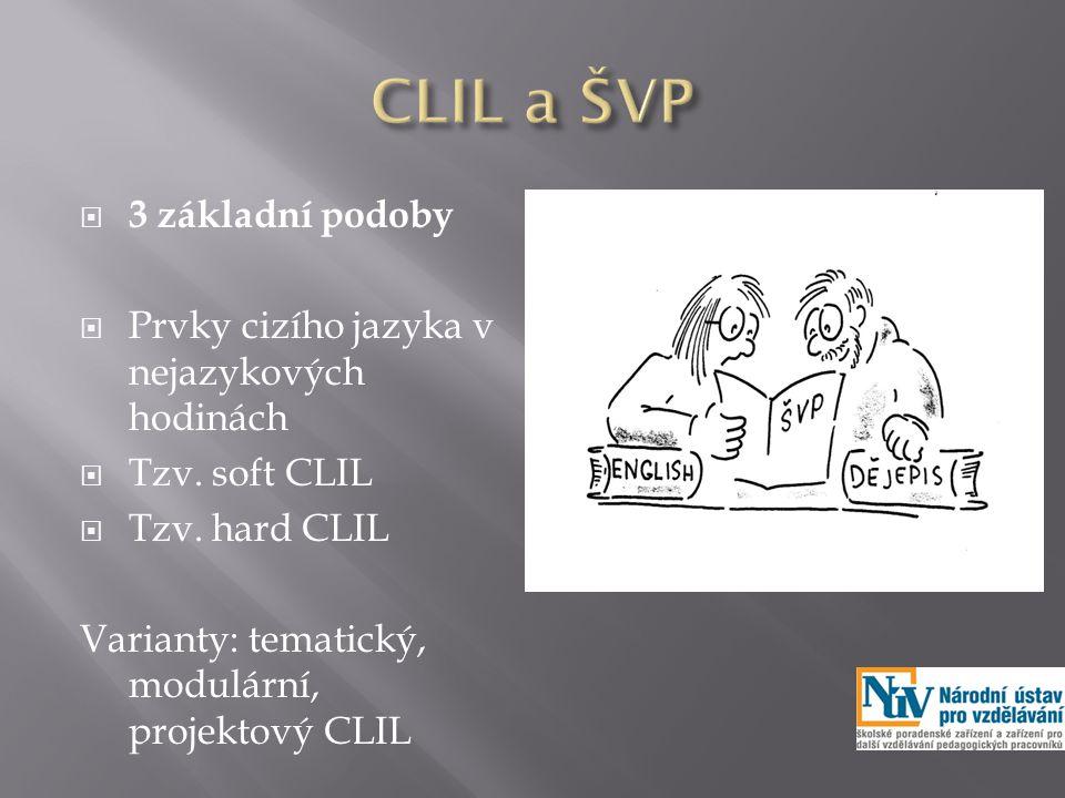  3 základní podoby  Prvky cizího jazyka v nejazykových hodinách  Tzv.