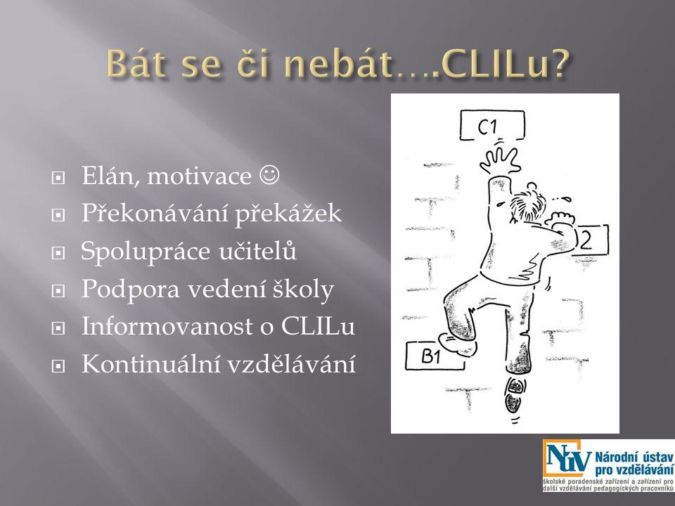  Elán, motivace  Překonávání překážek  Spolupráce učitelů  Podpora vedení školy  Informovanost o CLILu  Kontinuální vzdělávání