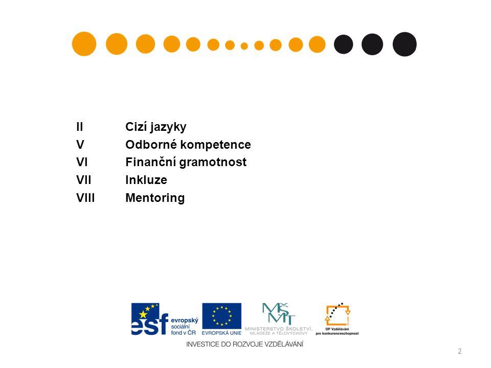 IICizí jazyky VOdborné kompetence VIFinanční gramotnost VIIInkluze VIIIMentoring 2