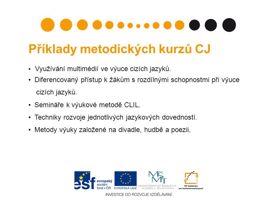 Příklady metodických kurzů CJ Využívání multimédií ve výuce cizích jazyků.