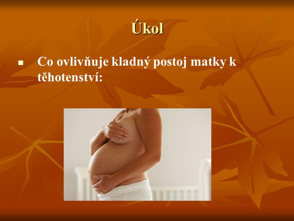 Příklad možného řešení vztah k budoucímu dítěti vztah k budoucímu dítěti postoj ženy k těhotenství a k plodu postoj ženy k těhotenství a k plodu představy o budoucím dítěti představy o budoucím dítěti důležitý – dobrý zdravotní stav matky důležitý – dobrý zdravotní stav matky duševní pohoda a vyrovnanost duševní pohoda a vyrovnanost schopnost ženy přizpůsobit se mateřství ovlivňuje: schopnost ženy přizpůsobit se mateřství ovlivňuje: stupeň rozvoje ženské role stupeň rozvoje ženské role stupeň její samostatnosti a odpovědnosti stupeň její samostatnosti a odpovědnosti stupeň síly a úrovně jejího vztahu k otci dítěte stupeň síly a úrovně jejího vztahu k otci dítěte