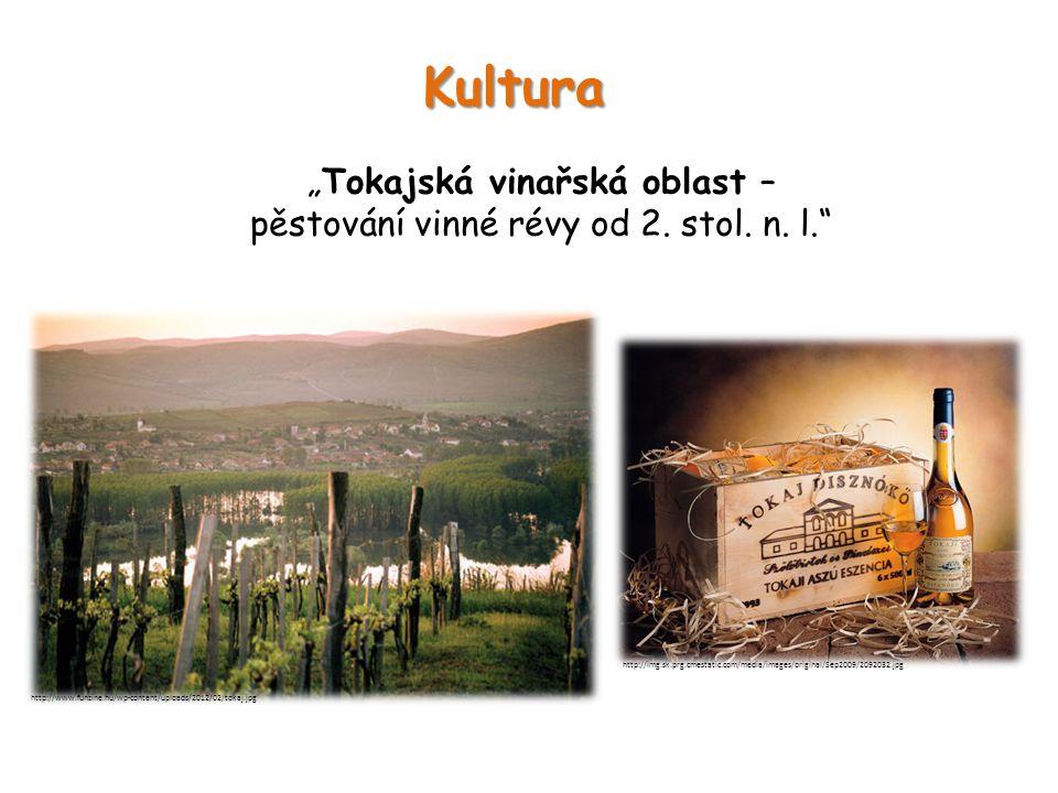 """Kultura """"Tokajská vinařská oblast – pěstování vinné révy od 2."""