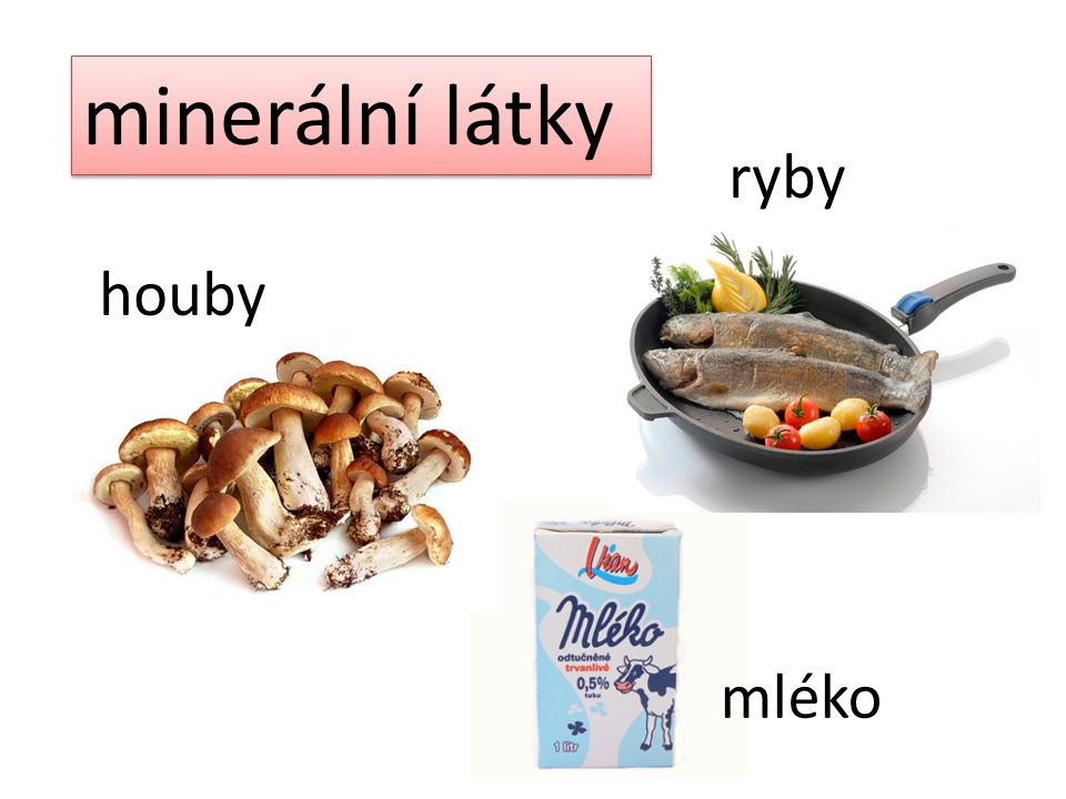 minerální látky ryby houby mléko