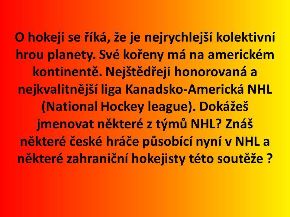 O hokeji se říká, že je nejrychlejší kolektivní hrou planety.