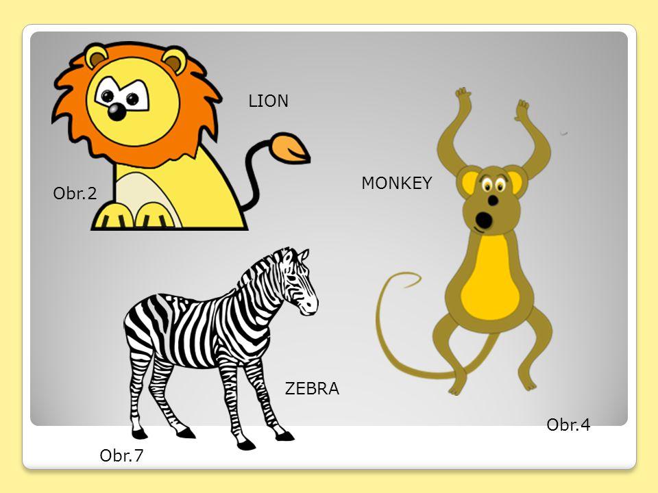 Obr.2 LION Obr.4 MONKEY Obr.7 ZEBRA