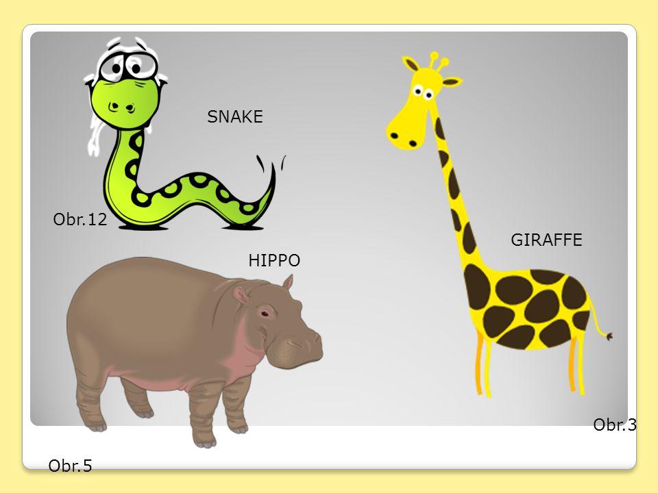Obr.3 GIRAFFE Obr.5 HIPPO Obr.12 SNAKE