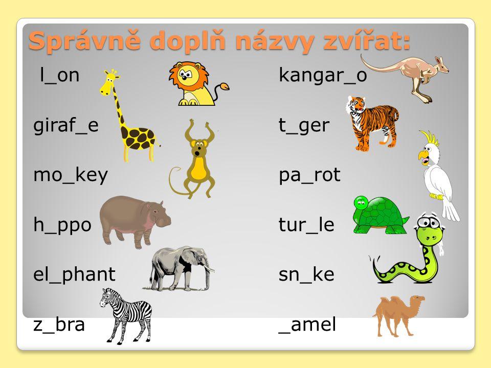 Správně doplň názvy zvířat: l_onkangar_o giraf_et_ger mo_keypa_rot h_ppotur_le el_phantsn_ke z_bra_amel