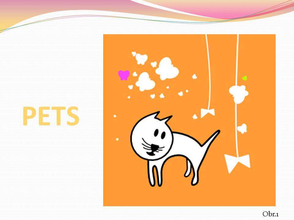 CAT Obr.2 Obr.3 DOG