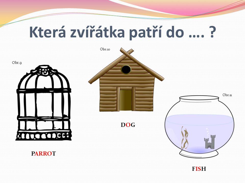Která zvířátka patří do …. ? PARROT DOG Obr.9 Obr.10 Obr.11 FISH